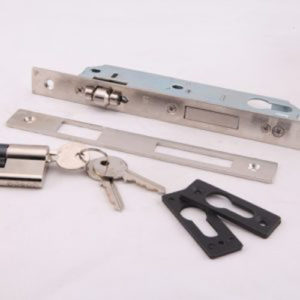 Pivot Door Locks